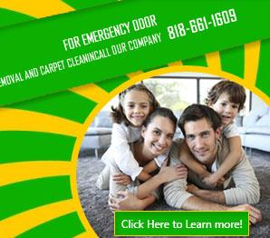 Our Services - Carpet Cleaning Sunland, CA